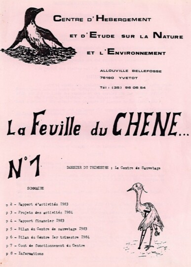 Feuille-du-CHENE-N°1
