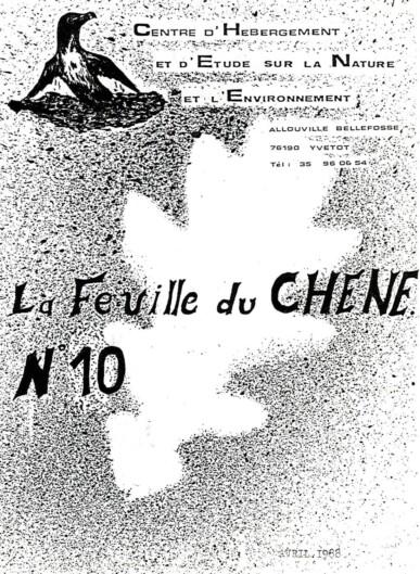 Feuille-du-CHENE-N°10