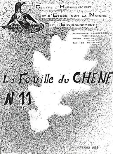 Feuille-du-CHENE-N°11