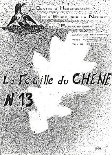 Feuille-du-CHENE-N°13