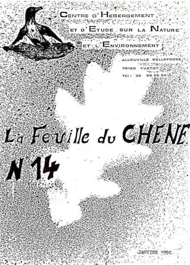 Feuille-du-CHENE-N°14