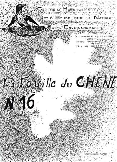Feuille-du-CHENE-N°16