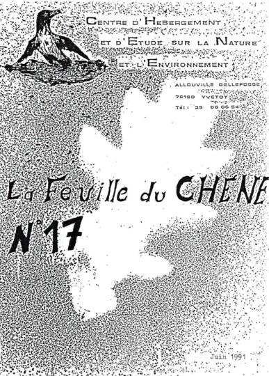 Feuille-du-CHENE-N°17