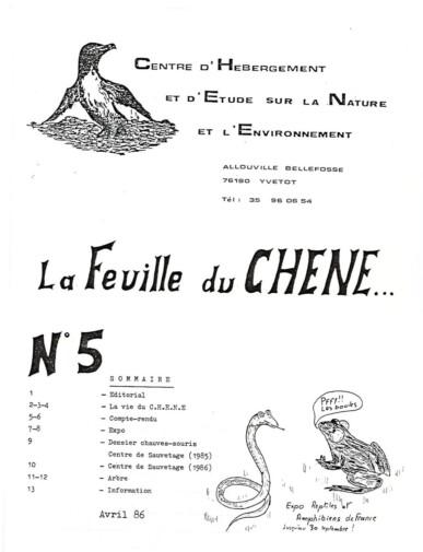 Feuille-du-CHENE-N°5