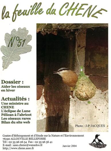 Feuille-du-CHENE-N°51