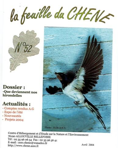 Feuille-du-CHENE-N°52