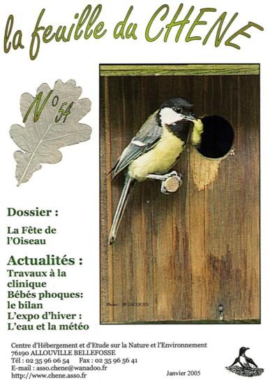 Feuille-du-CHENE-N°54