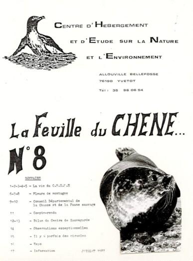 Feuille-du-CHENE-N°8
