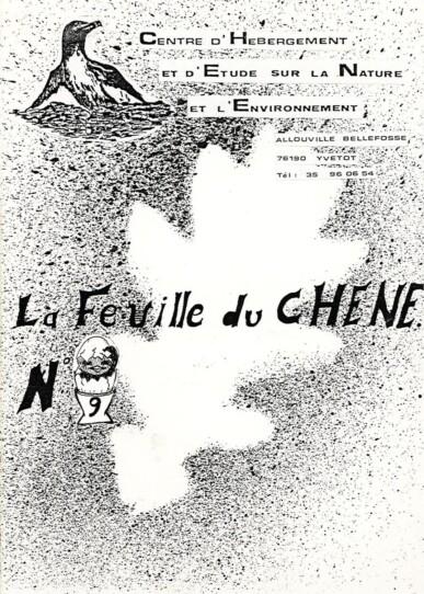 Feuille-du-CHENE-N°9