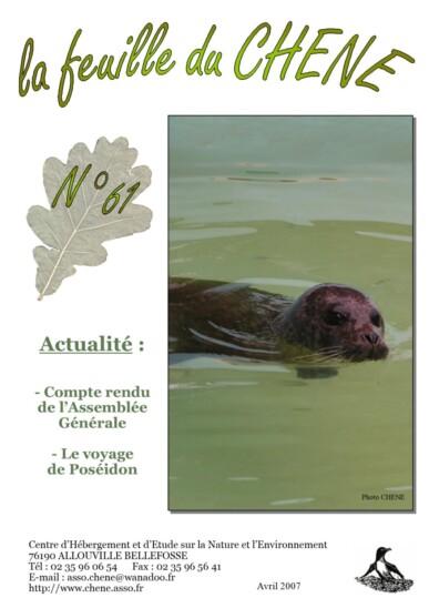 Feuille-du-CHENE-n°61