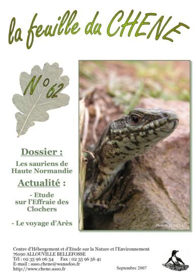 Feuille-du-CHENE-n°62