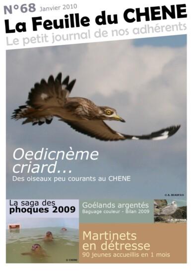 Feuille-du-CHENE-n°68