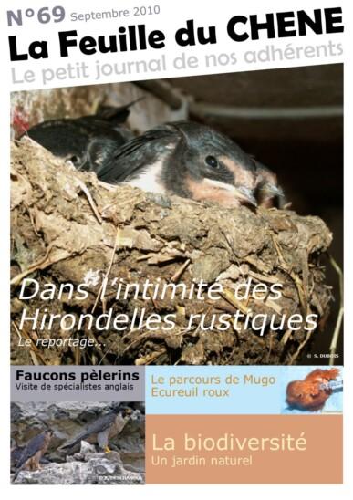 Feuille-du-CHENE-n°69