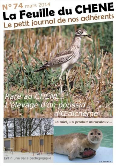 Feuille-du-CHENE-n°74