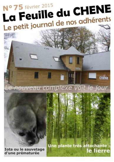 Feuille-du-CHENE-n°75
