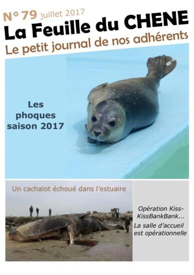 Feuille-du-CHENE-n°79